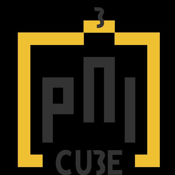 PNI Cube